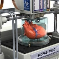 Image courtesy of sculpteo.com (printing the human body)