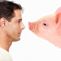 man_and_pig